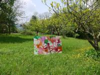Stefanie Anrig Bild Sciaredo im Garten